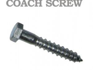 B12 Coach Screw